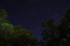 australien copyright piotr nogal 033