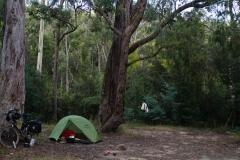 australien 046 copyright piotr nogal