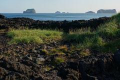 island-noxot-copyright-piotr-nogal_20190810_183554_DSC07674.JPG