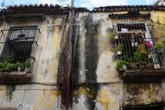 023-Cuba-copyright-piotr-nogal