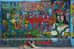 045-Cuba-copyright-piotr-nogal