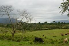 064-Cuba-copyright-piotr-nogal