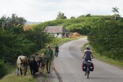 072-Cuba-copyright-piotr-nogal