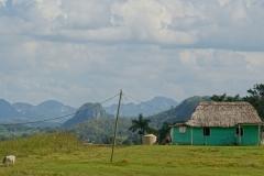 096-Cuba-copyright-piotr-nogal