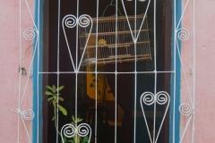125-Cuba-copyright-piotr-nogal