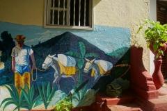 139-Cuba-copyright-piotr-nogal