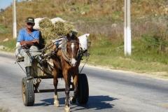 217-Cuba-copyright-piotr-nogal