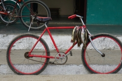 281-Cuba-copyright-piotr-nogal
