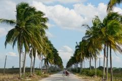 317-Cuba-copyright-piotr-nogal
