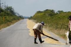 318-Cuba-copyright-piotr-nogal