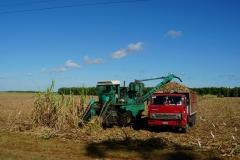 345-Cuba-copyright-piotr-nogal