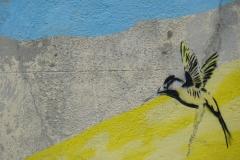 377-Cuba-copyright-piotr-nogal