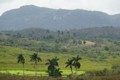 408-Cuba-copyright-piotr-nogal