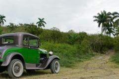 412-Cuba-copyright-piotr-nogal