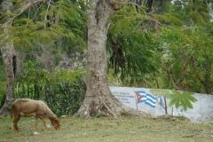 413-Cuba-copyright-piotr-nogal