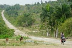 415-Cuba-copyright-piotr-nogal