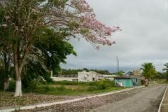 423-Cuba-copyright-piotr-nogal