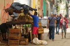 502-Cuba-copyright-piotr-nogal