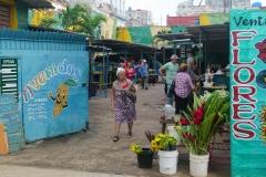 507-Cuba-copyright-piotr-nogal