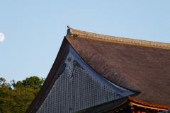 025 honshu und kyushu copyright piotr nogal