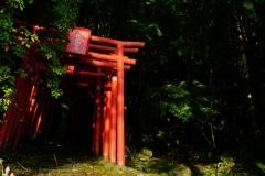 049 honshu und kyushu copyright piotr nogal
