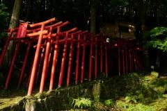 050 honshu und kyushu copyright piotr nogal