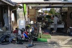072 honshu und kyushu copyright piotr nogal
