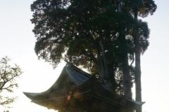 077 honshu und kyushu copyright piotr nogal