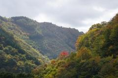 122 honshu und kyushu copyright piotr nogal