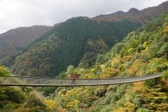 124 honshu und kyushu copyright piotr nogal