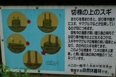 268 honshu und kyushu copyright piotr nogal