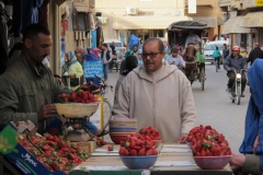 marokko piotr nogal noxot 008