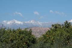 marokko piotr nogal noxot 016