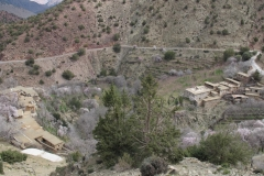 marokko piotr nogal noxot 040