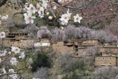 marokko piotr nogal noxot 045