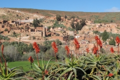 marokko piotr nogal noxot 060