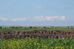 marokko piotr nogal noxot 061