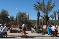 marokko piotr nogal noxot 074