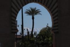 marokko piotr nogal noxot 077
