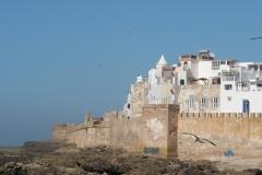 marokko piotr nogal noxot 081