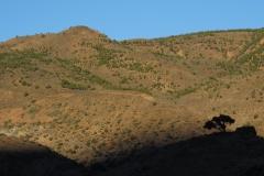 marokko piotr nogal noxot 103