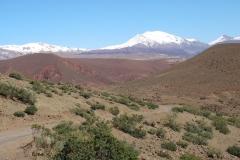 marokko piotr nogal noxot 107