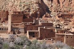 marokko piotr nogal noxot 114