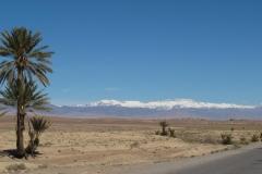 marokko piotr nogal noxot 131