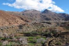 marokko piotr nogal noxot 153