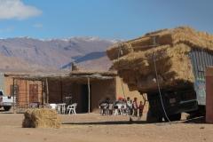 marokko piotr nogal noxot 171