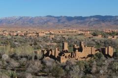 marokko piotr nogal noxot 187