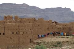 marokko piotr nogal noxot 262