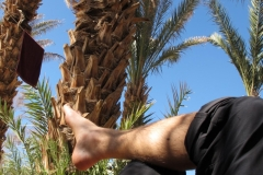 marokko piotr nogal noxot 275