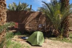 marokko piotr nogal noxot 276